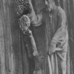 Dritter Schöpfungstag. Bild aus Schmitt 1926.
